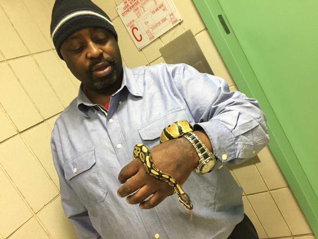"Mr. Beuzile takes his class's pet ball python, ""Carnage"" home for the weekend, but not before showing her off to our cameras."
